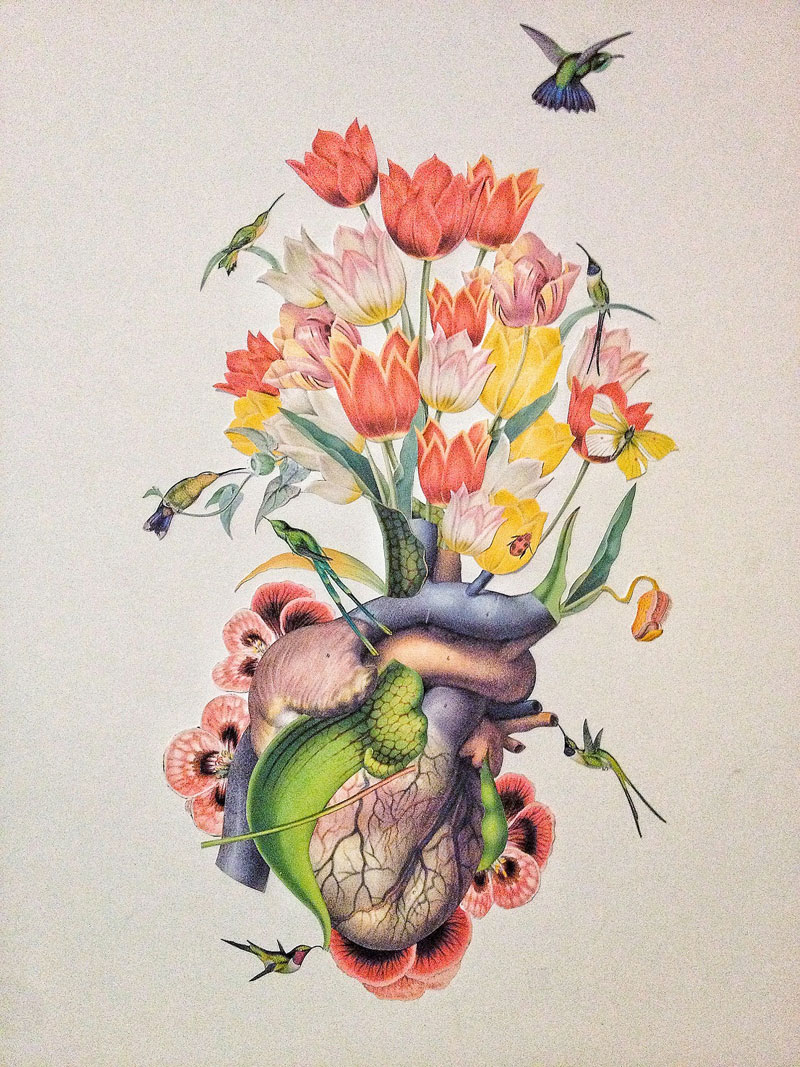 surreal-anatomical-collages-by-travis-bedel-aka-bedelgeuse-1