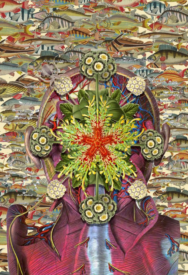 surreal-anatomical-collages-by-travis-bedel-aka-bedelgeuse-7