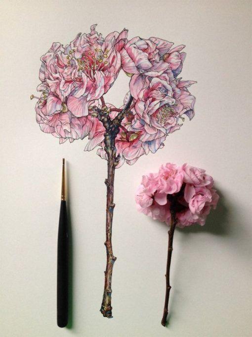 dibujos de flores 2