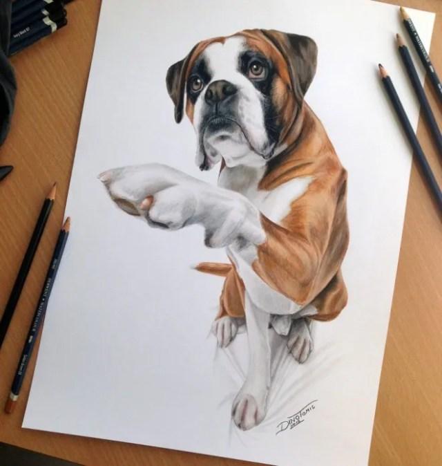 DIbujo de perro hiperrealista 1