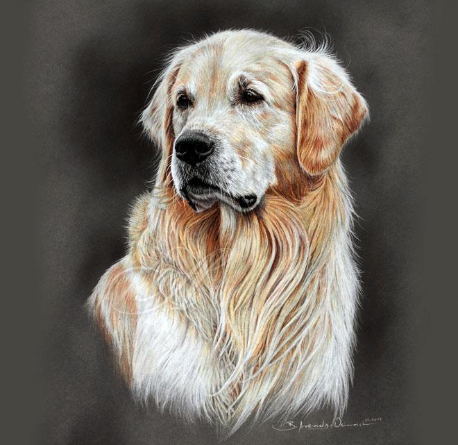 DIbujo perro realistas colores 7