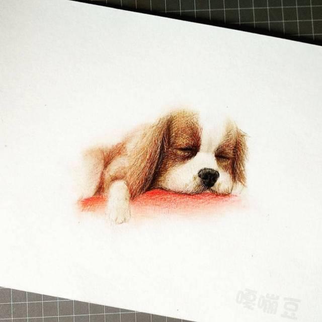 dibujos de animales tiernos perro cachorro