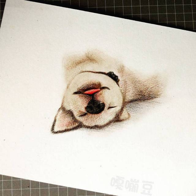 dibujos-tiernos-animales-4