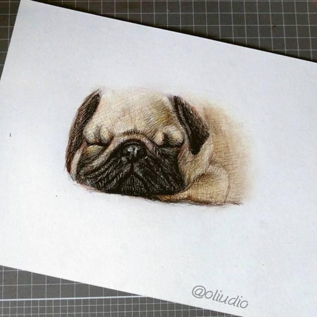 dibujos-tiernos-animales-6