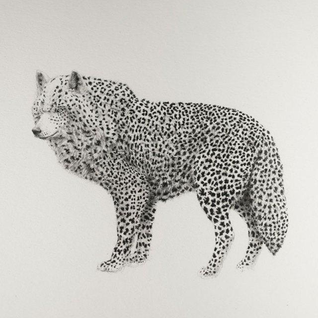 bestiario-animal-3