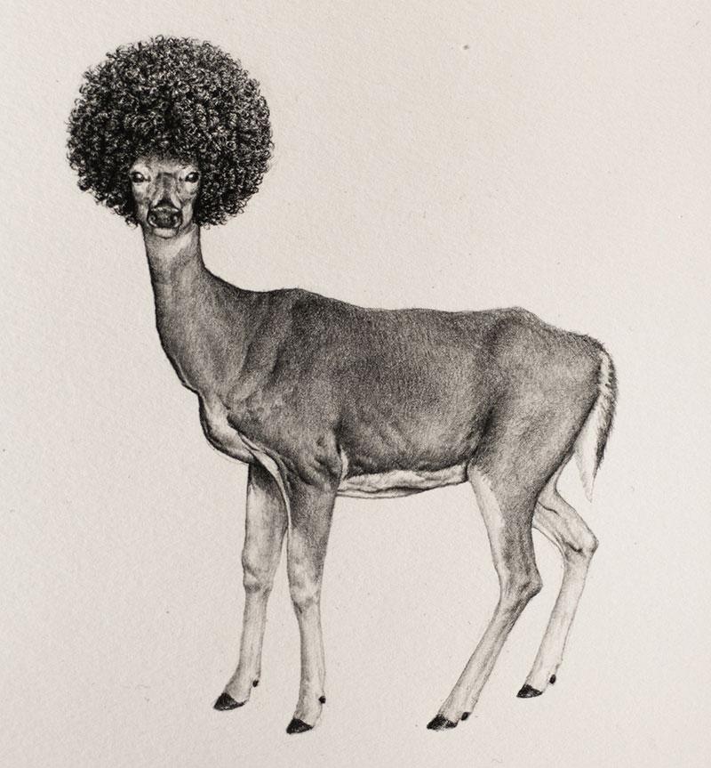 bestiario-animal-7