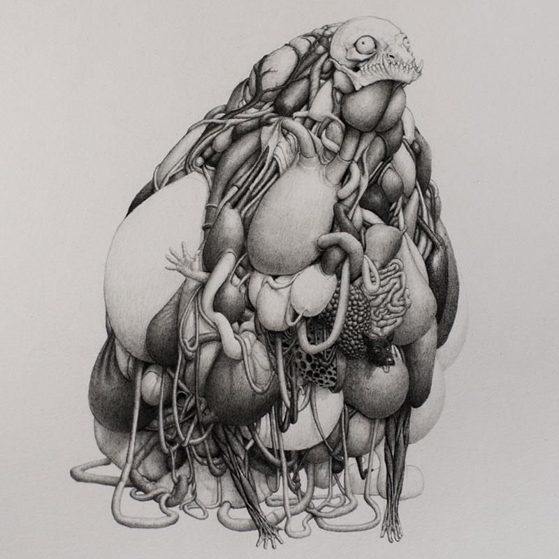 bestiario-animal-8