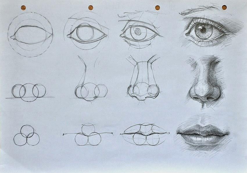12 Consejos Para Aprender A Dibujar Y Mejorar Arte Feed