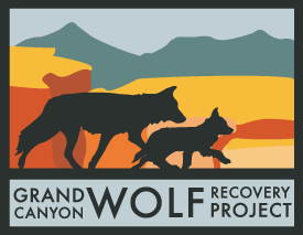 gran canyon wolf recovery project