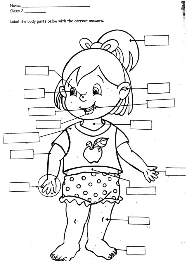 Coloring Pages for Kids Parts Of the Body