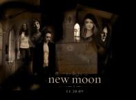 New Moon Affiche©Ballerina2009