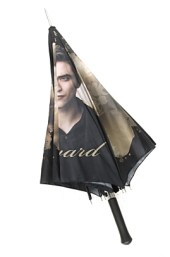 edward umbrella