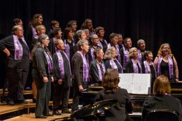 Performing at 2014 Sister Singers Network Festival, Champaign-Urbana