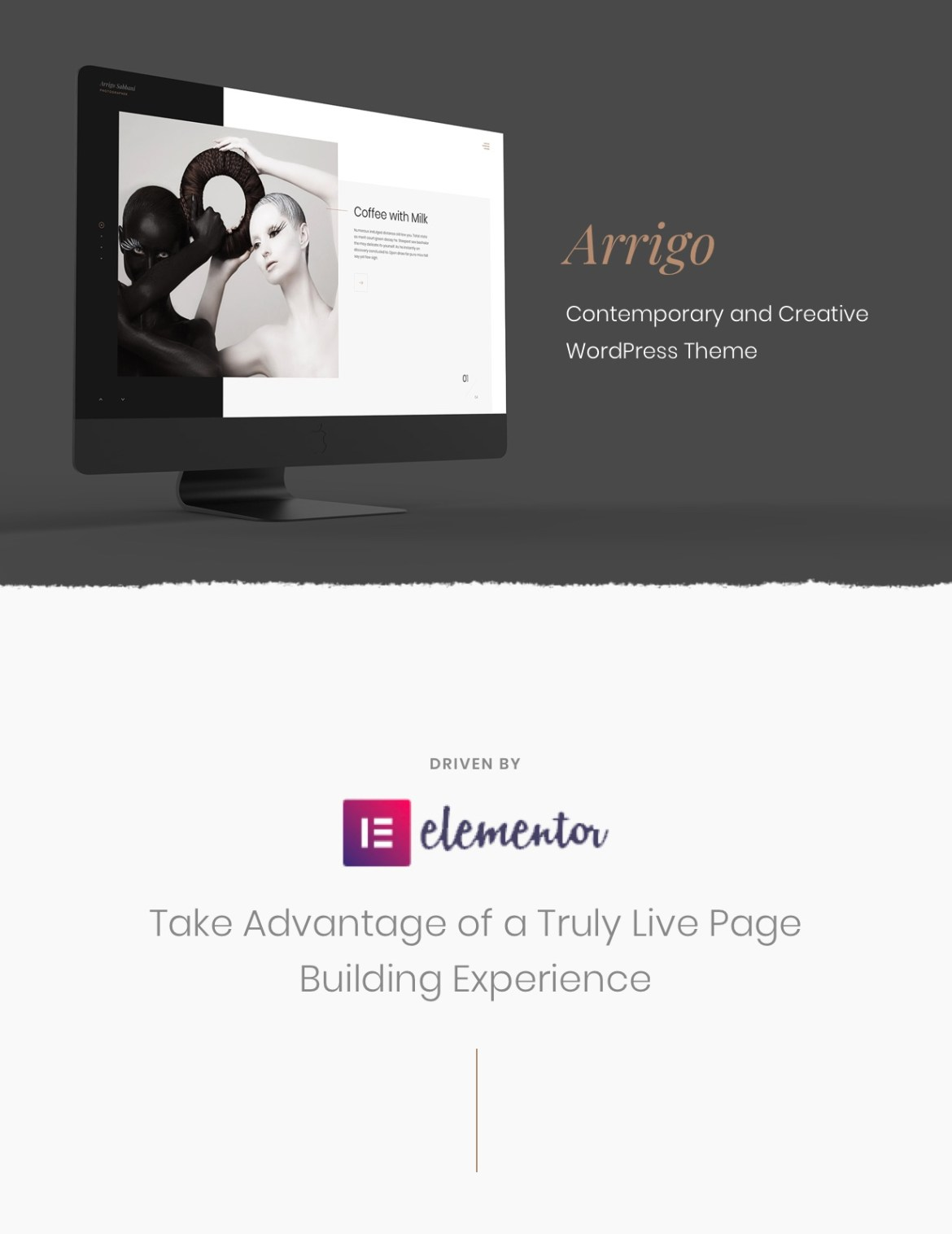 Arrigo – Contemporary Creative Portfolio Elementor WordPress Theme - 4