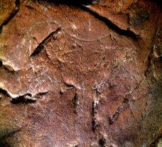 Caballo grabado. © Texnai. Principado de Asturias, Consejería de Cultura
