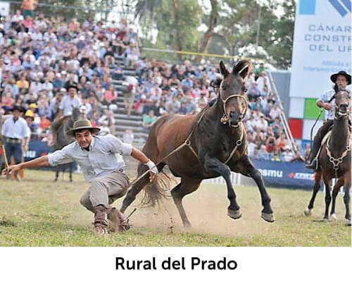 Rural del Prado