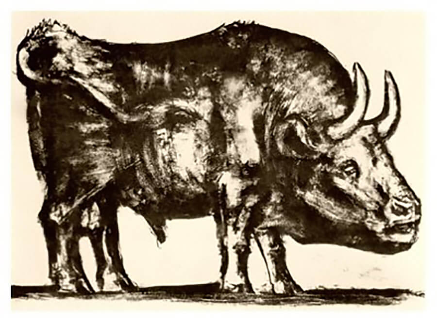 El toro de Picasso 2