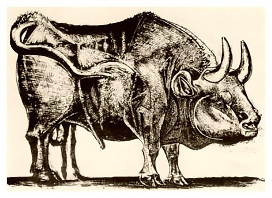 El toro de Picasso 3