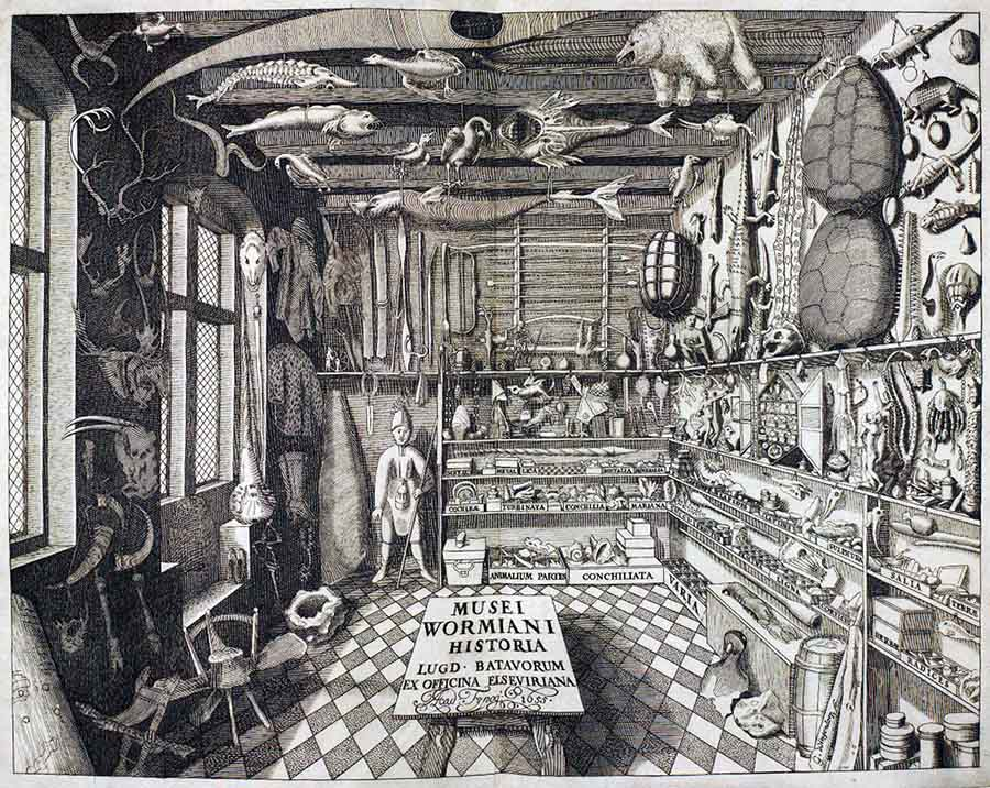 Musei Wormiani. gabinete de curiosidades