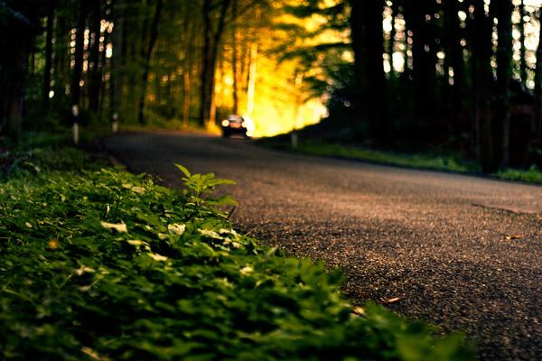 Paisagem; como fotografar paisagens