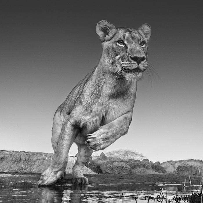 david yarrow; Emma