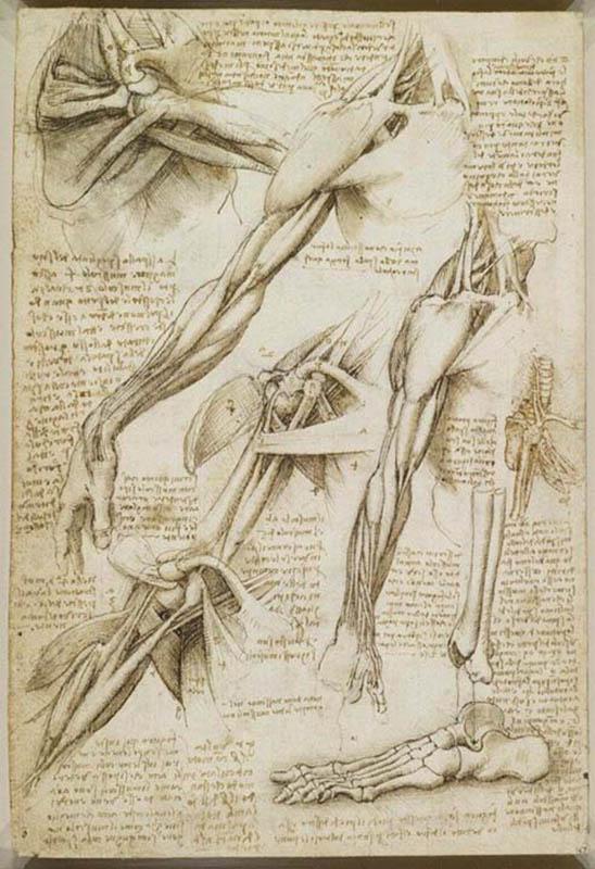 Leonardo da Vinci - Cadernos