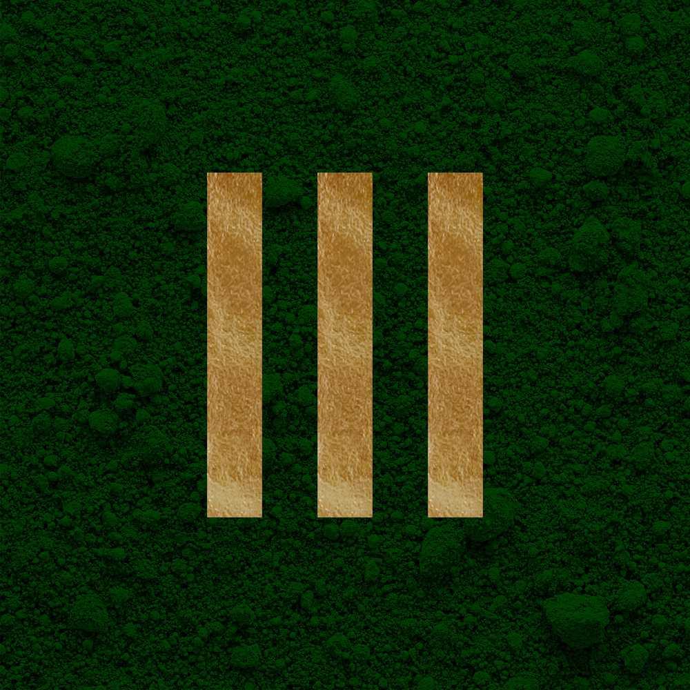 Janaína Coll - Pigments Green I