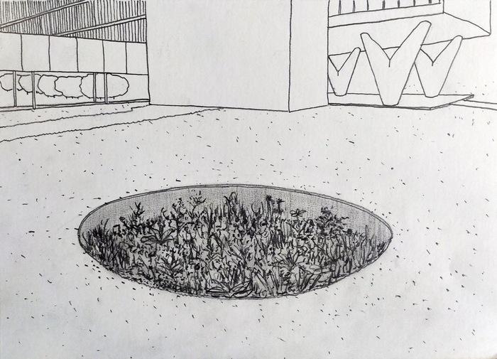 Zona da Mata encontro virtual com o artista Fernando Limberger - créditos Fernando Limberg