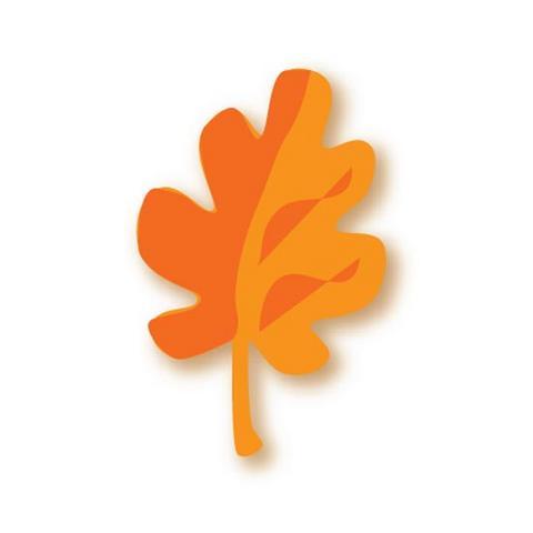 Molde flor com detalhes