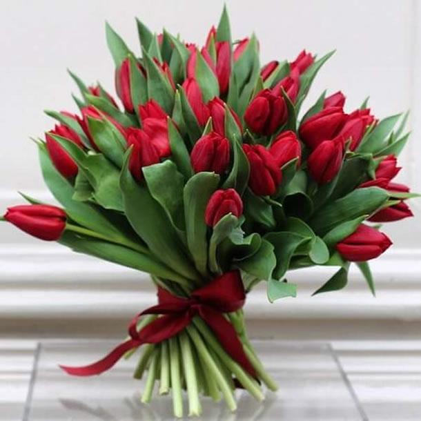 bodas-de-namoro-tulipas