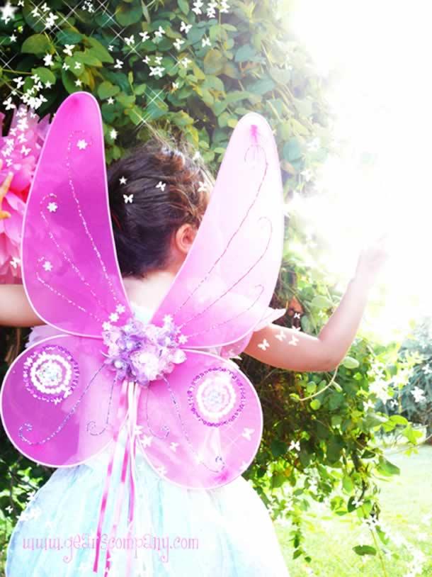 borboleta-de-meia-seda-asas
