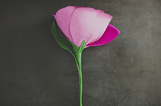 flor-gigante-de-papel-astes