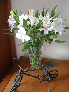 Lembrança de Tirandentes – bicicleta
