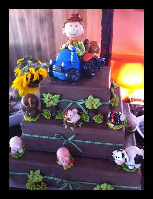 Bons Momentos – Festinha na Fazenda!!!