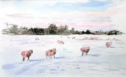 Blythburgh sheep walking in snow 209 x 130 mm