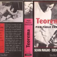"""Publican ensayo sobre el film """"Teorema"""" de Pier Paolo Pasolini"""