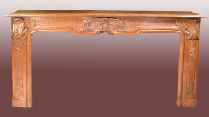 Fireplace Mantle - 19th Cen France - FPM555