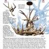 Antler Chandelier - Whitetail Deer North America - LA203