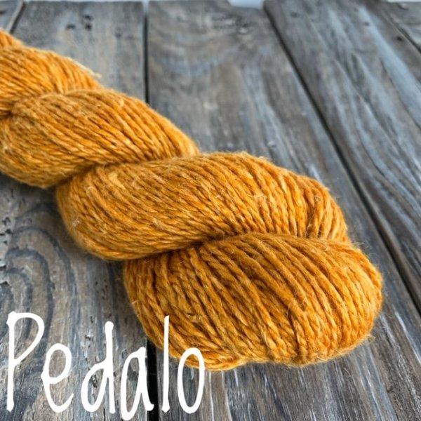 Chalet Pedalo