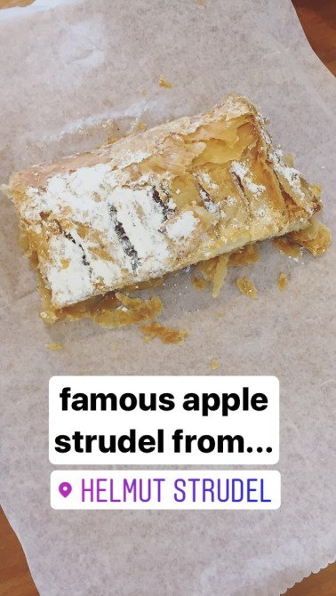 apple strudel from helmut strudel