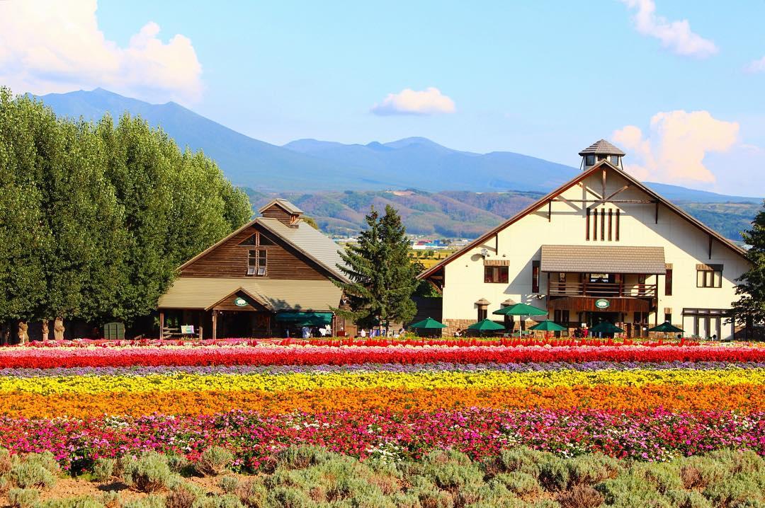 Tentukan Musim Anda Ketika Berlibur Ke Hokkaido