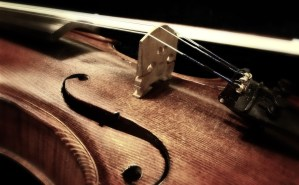 A close up of a violin