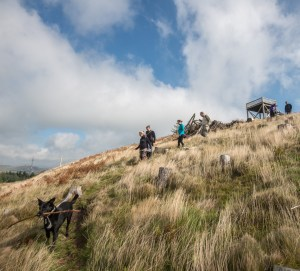 a dog with a stick and some people walking down a fell.
