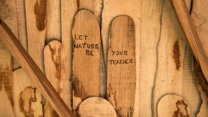 Wood with wording: let nature be, your teacher.