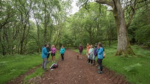 A group of people at Eskfest reading poetry in the woods