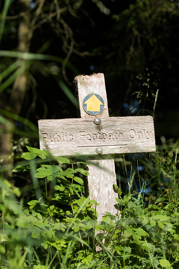 Wooden public footpath sign in grass.