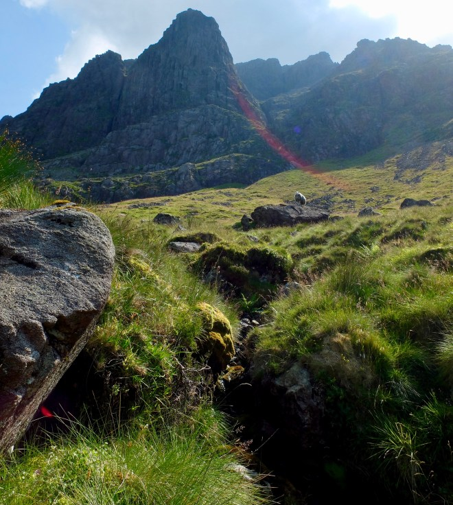 Photograph of Pillar Rock rising above the grassy fellside; on a sunny day