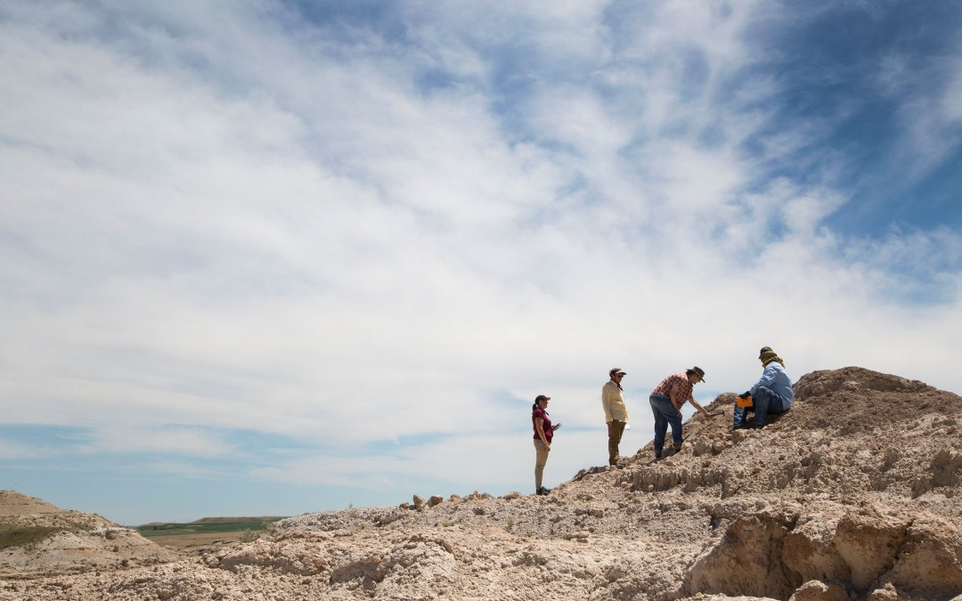 Digging for Dinosaur Fossils in North Dakota