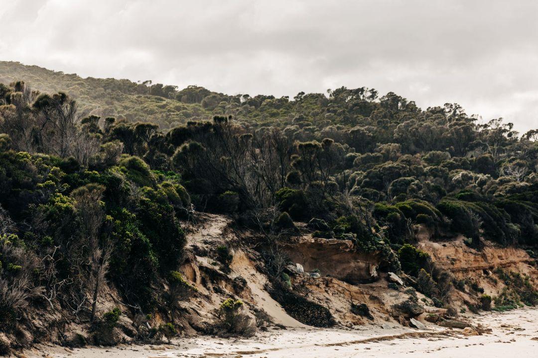 Chef Analiese Gregory's Untamed Tasmanian Life   Artful Living