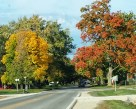 Fall in Winterset, Iowa. (Photo: Patricia Teter. All Rights Reserved.)